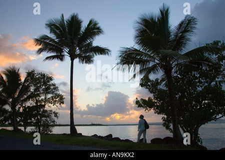 Traveller looks out over the mouth of the Mossman River at Newell Beach Daintree Australia - Stock Photo