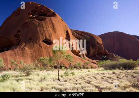 Trees at the base of Ayers Rock Uluru Red Centre Australia - Stock Photo