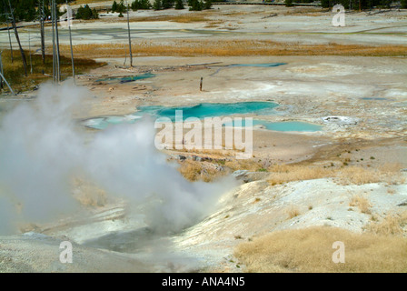 Black Growler Steam Vent and View of Porcelain Basin in Norris Geyser Basin at Yellowstone National Park Wyoming - Stock Photo