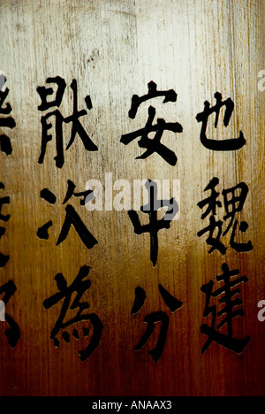 The Chinese Garden Of Friendship In Darling Harbour Sydney Stock
