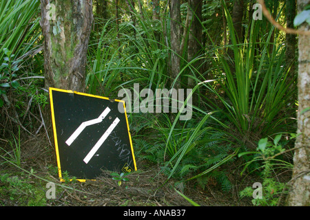 sign narrow road into forest Waitakere Ranges New Zealand North Island - Stock Photo