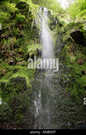 Waterfall in Yorkshire North West England - Stock Photo