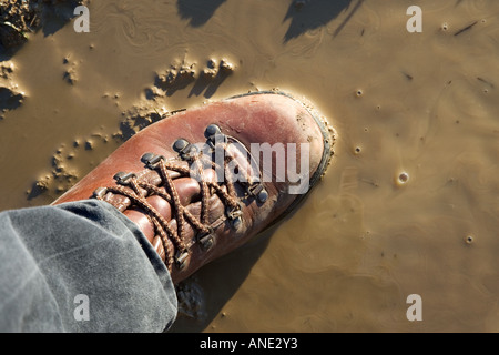 Walker steps in muddy puddle Oxfordshire United Kingdom - Stock Photo