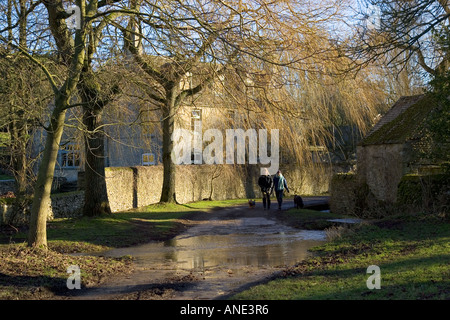 Couple walk their dogs on a country lane in Swinbrook Oxfordshire United Kingdom - Stock Photo
