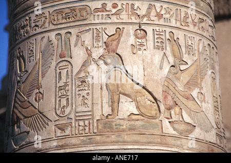 Detail of Coloured Hieroglyphs on a Pillar in the Temple of Sobek and Haroeris in Kom Ombo, Egypt - Stock Photo
