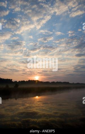 Mist over Hickling Broad Norfolk Broads United Kingdom