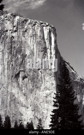 El Capitan Yosemite - Stock Photo
