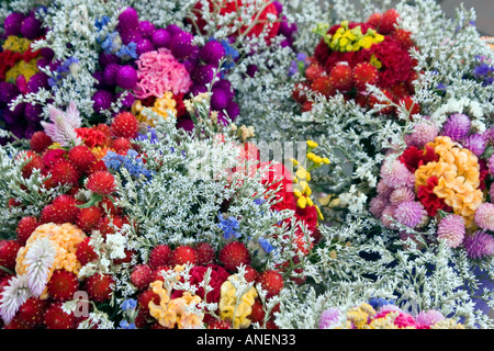 A large bouquet of dried flowers - Stock Photo