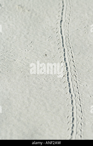 Bicycle tire track on sand - Stock Photo