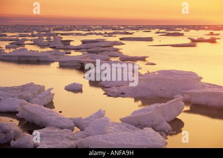 Ice flows on Hudson Bay, Churchill, Manitoba, Canada. - Stock Photo