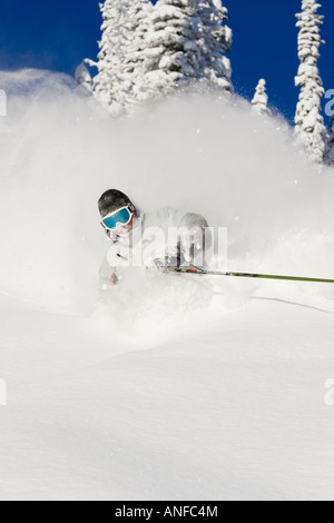 Young man skiing deep powder at Fernie Alpine Resort, Fernie, British Columbia, Canada. - Stock Photo