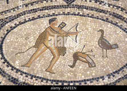 Detail of mosaics in the Roman ruins at Volubilis Morocco North Africa - Stock Photo