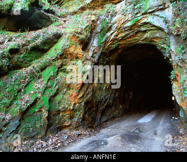Entrance into Nada tunnel at the Red River Gorge in Daniel Boone National Forest Slade Kentucky  - Stock Photo