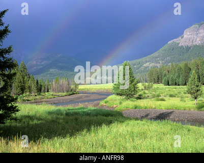 Mountain Prairie with Lodgepole Pine Forest, with Double Rainbow over River, Lamar Valley, Yellowstone National - Stock Photo