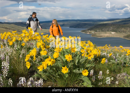 A young couple chats while hiking through spring wildflowers, as Stump Lake forms the background South of Kamloops, - Stock Photo