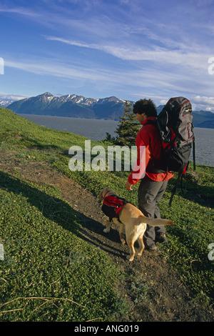 Hiker Yellow Lab on Trail Along Turnagain Arm SC AK Summer - Stock Photo