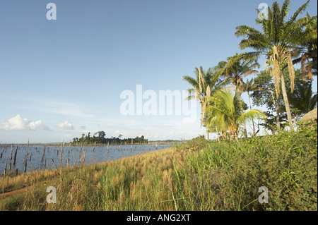 The Brokopondo reservoir in the interior of Suriname as seen from the Maroon village of Lebidoti - Stock Photo
