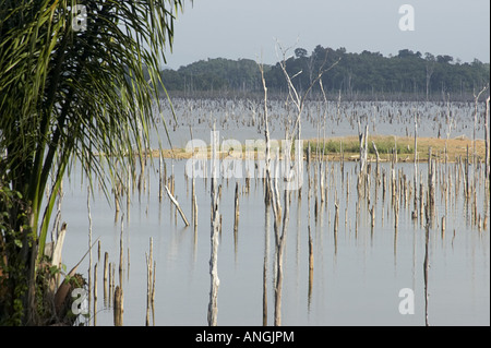 The Brokopondo reservoir in the interior of Suriname as seen from the Maroon village of Lebidoti. - Stock Photo