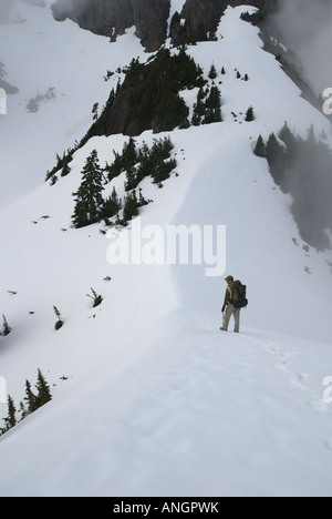 Taking in the view from the ridgeline on Mount Arrowsmith, Vancouver Island, British Columbia, Canada. - Stock Photo