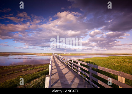 The Kellys beach boardwalk across the lagoon to the beaches and dunes on the Barrier Islands, Kouchibouguac National - Stock Photo