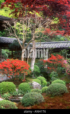 Maple Garden, Daitokuji Temple, Kyoto, Japan - Stock Photo