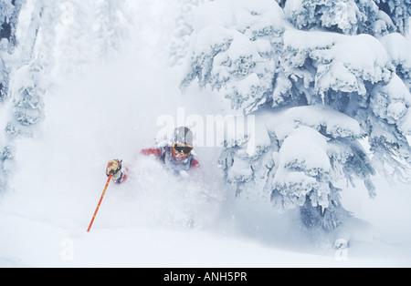 A man skiing deep powder in Fernie Alpine Resort backcountry, British Columbia, Canada. - Stock Photo