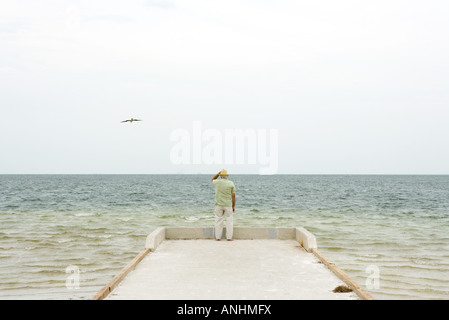Man standing on pier looking at ocean, rear view - Stock Photo