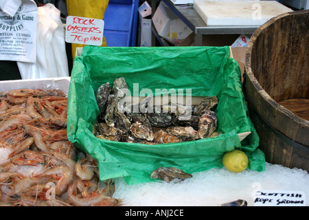 Oysters for sale  Borough market London England - Stock Photo