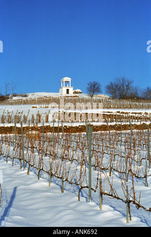 The Disznoko vineyard with a watch tower and the rock that has given the name to Disznoko, under snow in winter. - Stock Photo