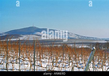 View from the Disznoko vineyard: the Tokaj mountain. On the other side is the village Tokaj. The Disznókő winery - Stock Photo