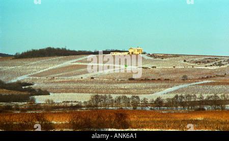 In Tokaj: a view over the Pajzos wine estate near Tolcsva. Oremus is owned by the Alvarez family that also owns - Stock Photo
