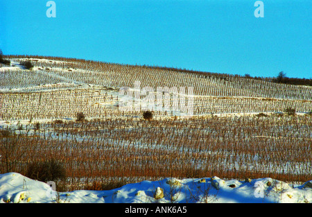 View from the Oremus winery over the vineyards around the Tolcsva village in Tokaj. Oremus is owned by the Alvarez - Stock Photo