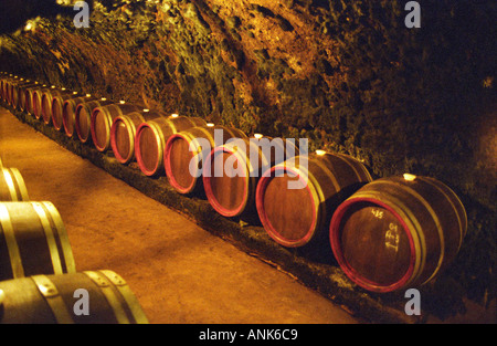 Oremus winery in Tolcsva, Tokaj: The underground cellar carved in the volcanic rock with long tunnels with rows - Stock Photo