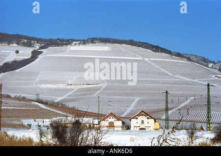 The Tokaj mountain with vineyards on the steep slopes at the Tarcal village. The Hetszolo vineyard with the name - Stock Photo