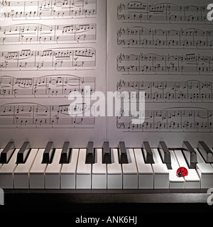 Red ladybug is sitting on white piano keyboard with sheet music on the background - Stock Photo