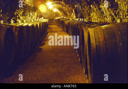 The Royal Tokaji Wine company in Mad: the wine cellar with long tunnels filled with wooden barrels with ageing Tokaj - Stock Photo