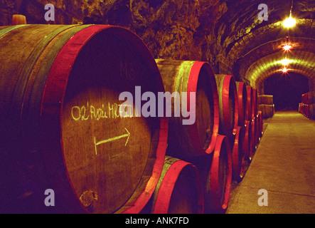 The Disznoko winery in Tokaj: In the underground cellar, rows of wooden barrels piled high with aging Tokaj wine. - Stock Photo
