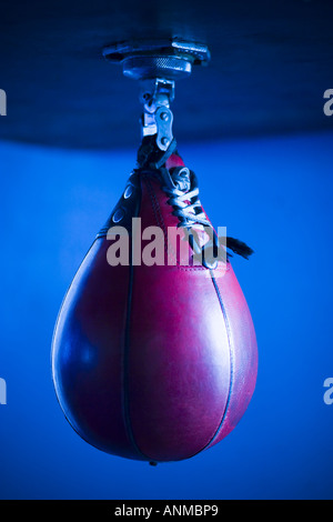Punching bag - Stock Photo