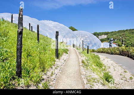 The Prairie section of the Eden Project in Cornwall on a bright summer's day. UK - Stock Photo