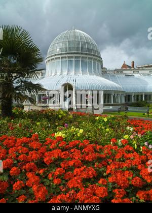 Palm House, Botanic Gardens, Belfast, Northern Ireland - Stock Photo