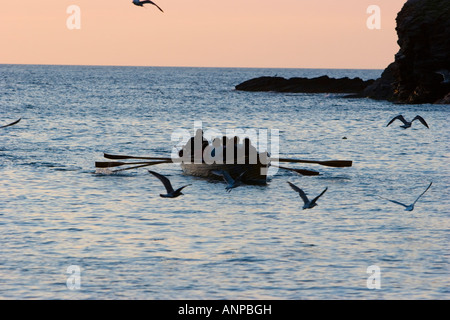 Rowing in the sea - Stock Photo