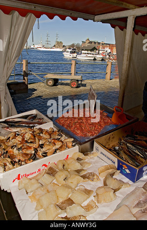 Bergen norway europe outdoor market stall in world famous for Sea world fish market