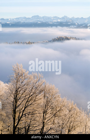 View from Otto Kulm over the Uetliberg in clouds near Zurich, Switzerland. - Stock Photo