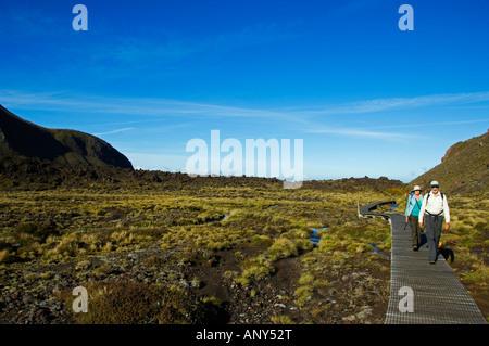 New Zealand, North Island, Tongariro National Park. Hikers on the Tongariro Crossing one of the Great Walks of New - Stock Photo