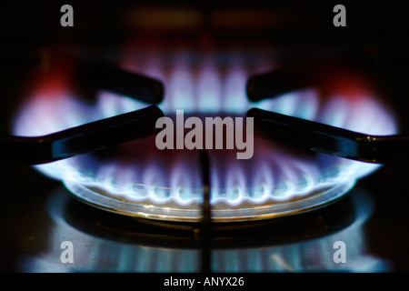 Gas flame on cooker hob England United Kingdom - Stock Photo