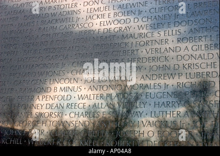 MAYA YING LIN designed the VIETNAM VETERANS MEMORIAL known as THE
