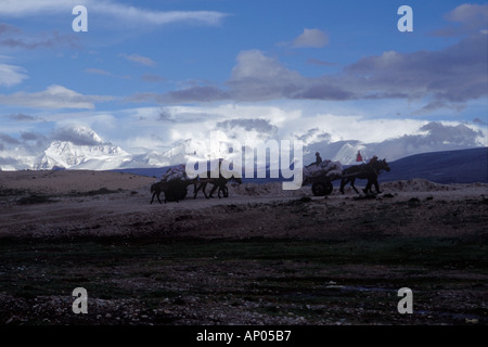 TIBETANS with horse drawn carts in front of SHISHA PANGMA 8012 Meters Southern route to MOUNT KAILASH TIBET - Stock Photo