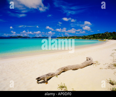 A Piece Of Driftwood Lays On White Sandy Lindquist Beach With Turquoise Water St Thomas US Virgin islands - Stock Photo
