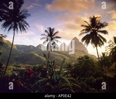 The sun sets over the Pitons as they tower above the Caribbean island of St Lucia and tropical foliage blankets - Stock Photo