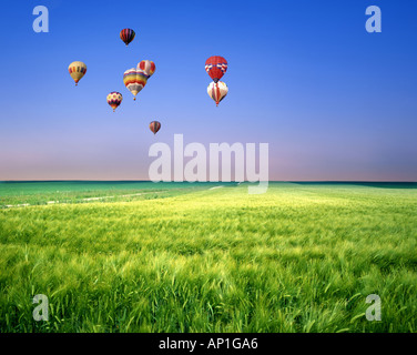 FR -  CHAMPAGNE: Hot Air Balloons over Landscape - Stock Photo